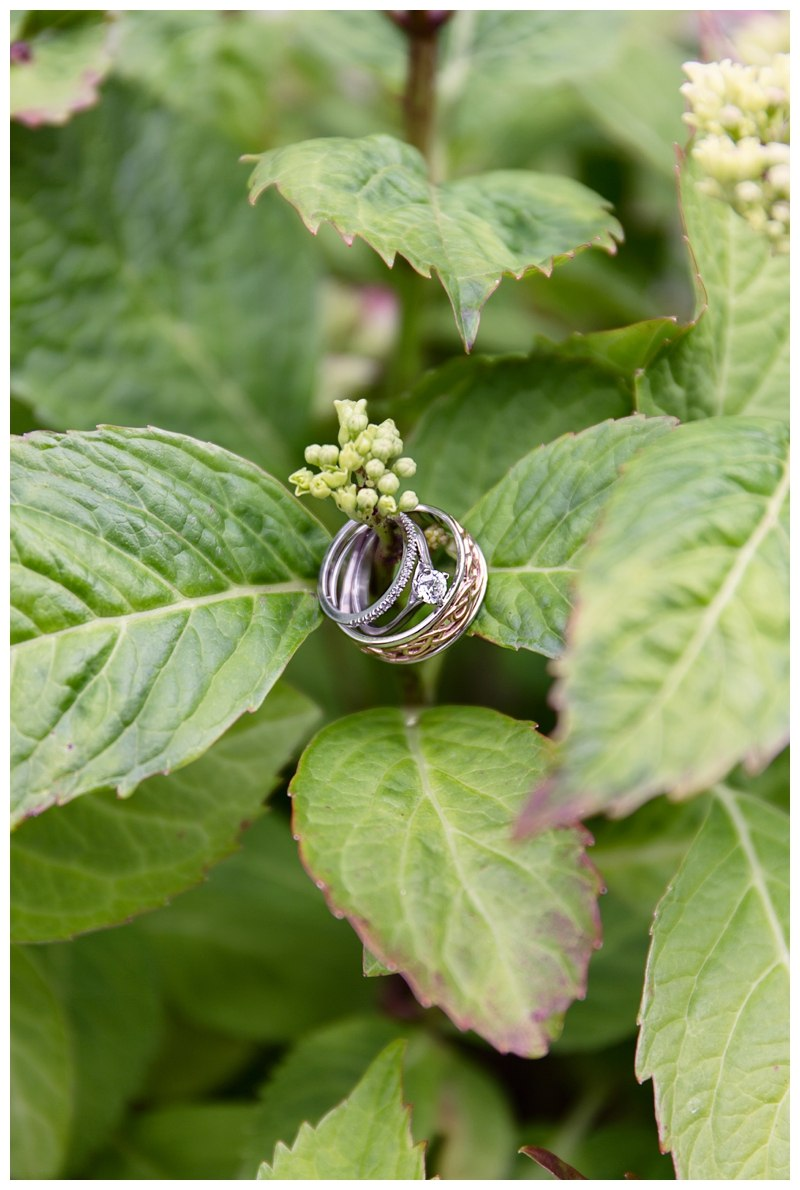 Wedding rings in leaves